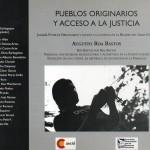 Pueblos originarios y acceso a la justicia313